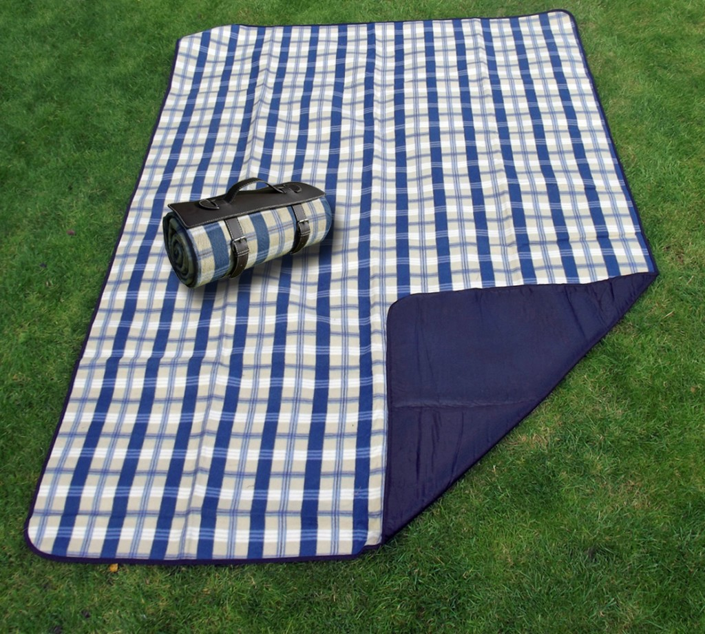 freddie and sebbie blanket set out for a picnic